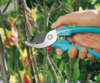 How to choose your pruning equipment
