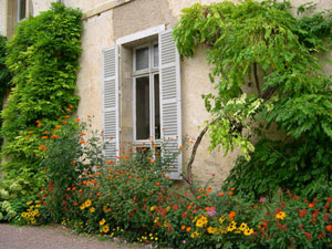 Shrubs and trees next to the house - Plante contre l humidite dans la maison ...