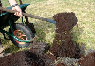 Soil preparation, is not something to get wrong