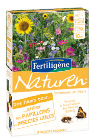 Flowers for Attracting Butterflies and other Beneficial Insects - Plant care, treatments