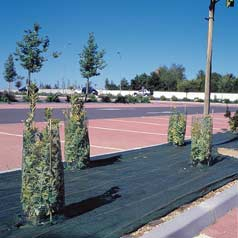 Plastic Mesh Tree guards - h060cm d14cm