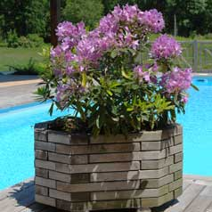 Rectangular Wooden Planter 075