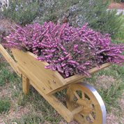 Decorative Wooden Wheelbarrow XL