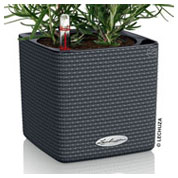 CUBE Color 14 cm - Anthracite - LECHUZA