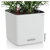 CUBE Color 14 cm - White - LECHUZA