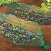 Anti birds net for vegetable garden - 2 x 5 m