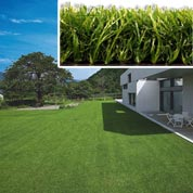 Artificial Lawn - 50 mm