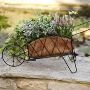 Planter Wheelbarrow in Metal