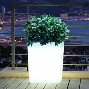 Square Luminous White Pot - 60x31x H.70