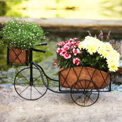Planter Tricycle in Metal
