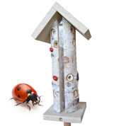 Biodiversity Kit specific for Ladybirds - Caillard