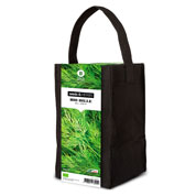 Aromatic Plants Growing Kit – Dill