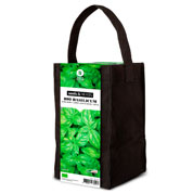 Aromatic Plants Growing Kit – Basil