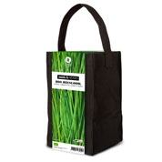 Aromatic Plants Growing Kit – Chives