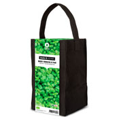 Aromatic Plants Growing Kit – Oregano