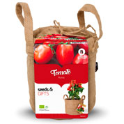 Growing Kit - Tomatoes 'Roma'