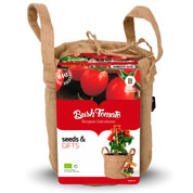 Growing Kit - Tomatoes 'Borgese Delicatesse'