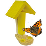 Butterflies Feeding Table - Caillard