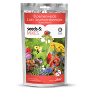 Flowering mix to attract Ladybirds - 25 m²