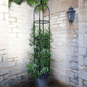 Obelisk Support for Climbing Plants YORK - 220 cm