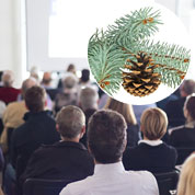 Pine Tree as a business gift