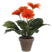 Artificial Plant - Orange Gerbera - MICA