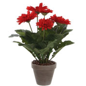 Artificial Plant - Red Gerbera - MICA