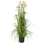 Artificial Plant - Variegated Grass Pom Pom - MICA