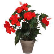 Artificial Plant - Red Hibiscus - MICA
