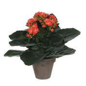 Artificial Plant - Orange Kalanchoe - MICA