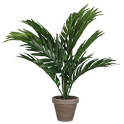Artificial Plant - Areca Palm - MICA