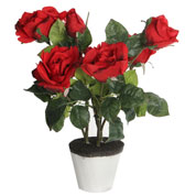 Artificial Plant - Red Rose - MICA