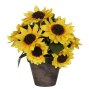 Artificial Plant - Sunflowers - MICA