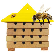 Hive for Solitary Bees - Caillard