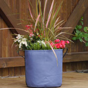 Spring container 'Spring Blue Majesty'