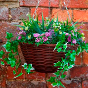 Hanging Basket Artificial Plant -Violet and Yellow