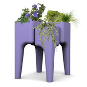 KIGA kitchen garden table M - Lavander - Hurbz