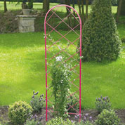 Metal Trellis for Climbing Plants